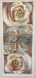 Sahlin-Roses